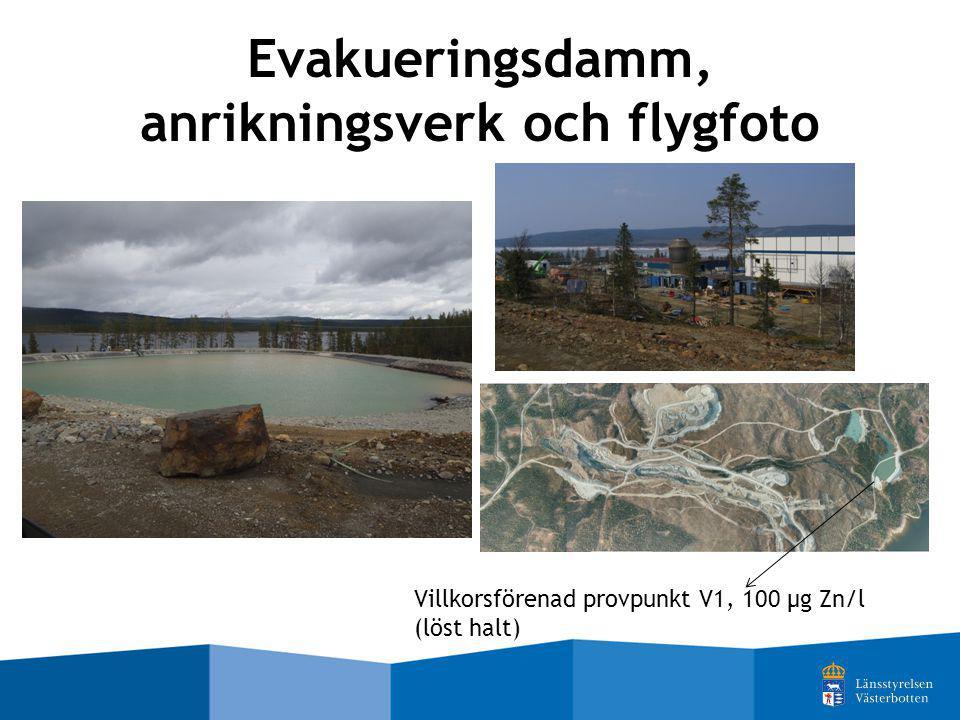 Evakueringsdamm, anrikningsverk och flygfoto Villkorsförenad provpunkt V1, 100 µg Zn/l (löst halt)