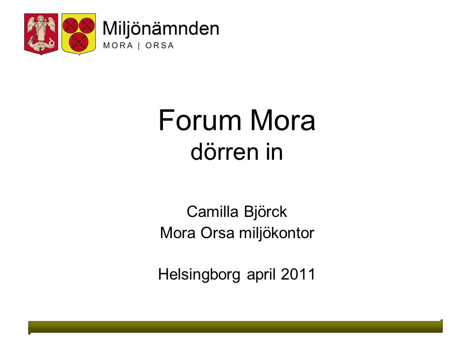 Forum Mora dörren in Camilla Björck Mora Orsa miljökontor Helsingborg april 2011