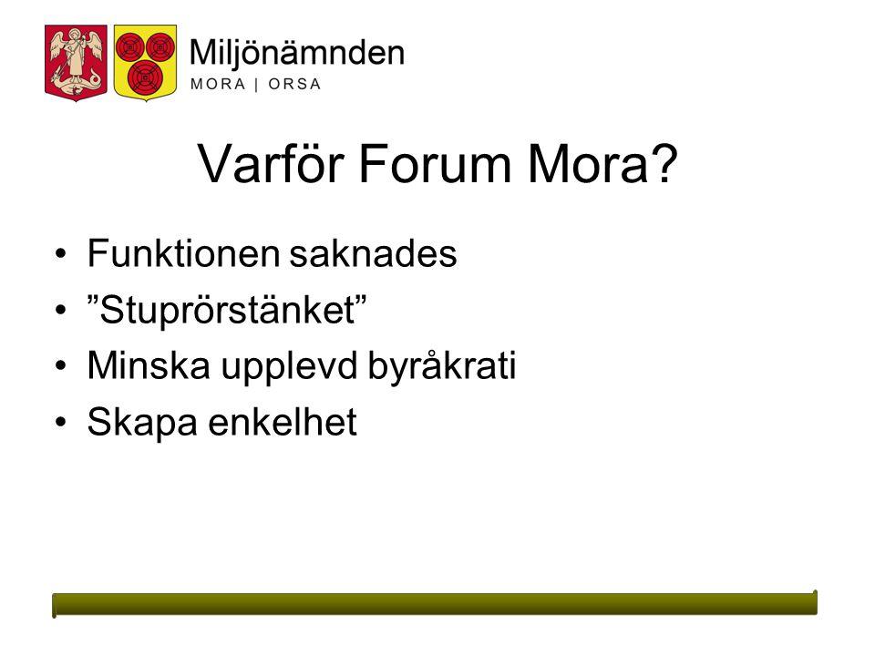 Varför Forum Mora? Funktionen saknades Stuprörstänket Minska upplevd byråkrati Skapa enkelhet