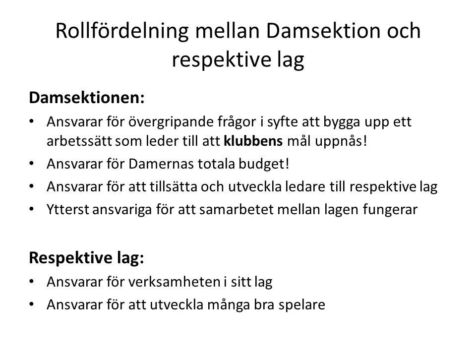 Rollfördelning mellan Damsektion och respektive lag Damsektionen: Ansvarar för övergripande frågor i syfte att bygga upp ett arbetssätt som leder till