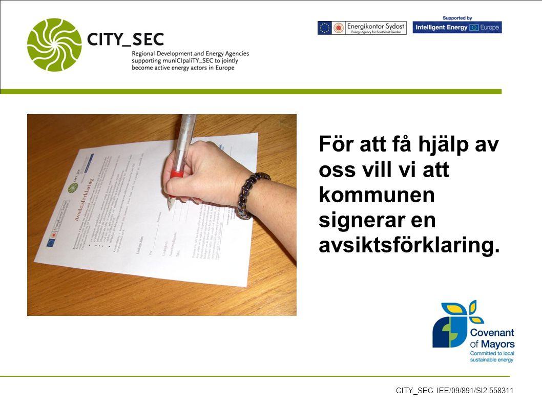 För att få hjälp av oss vill vi att kommunen signerar en avsiktsförklaring.