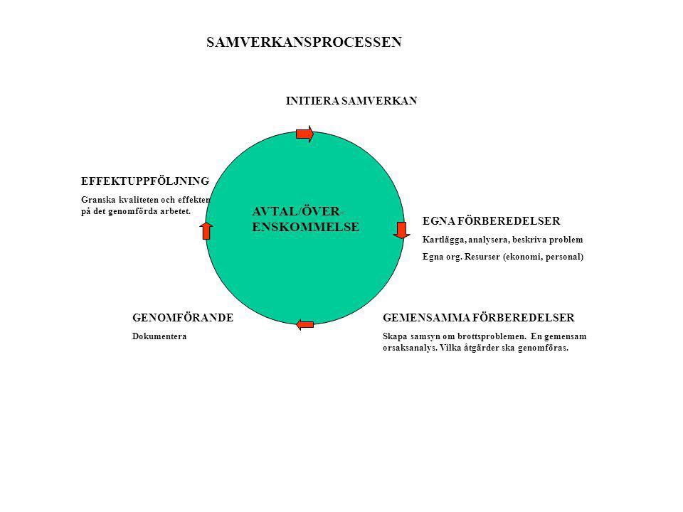 INITIERA SAMVERKAN EGNA FÖRBEREDELSER Kartlägga, analysera, beskriva problem Egna org.