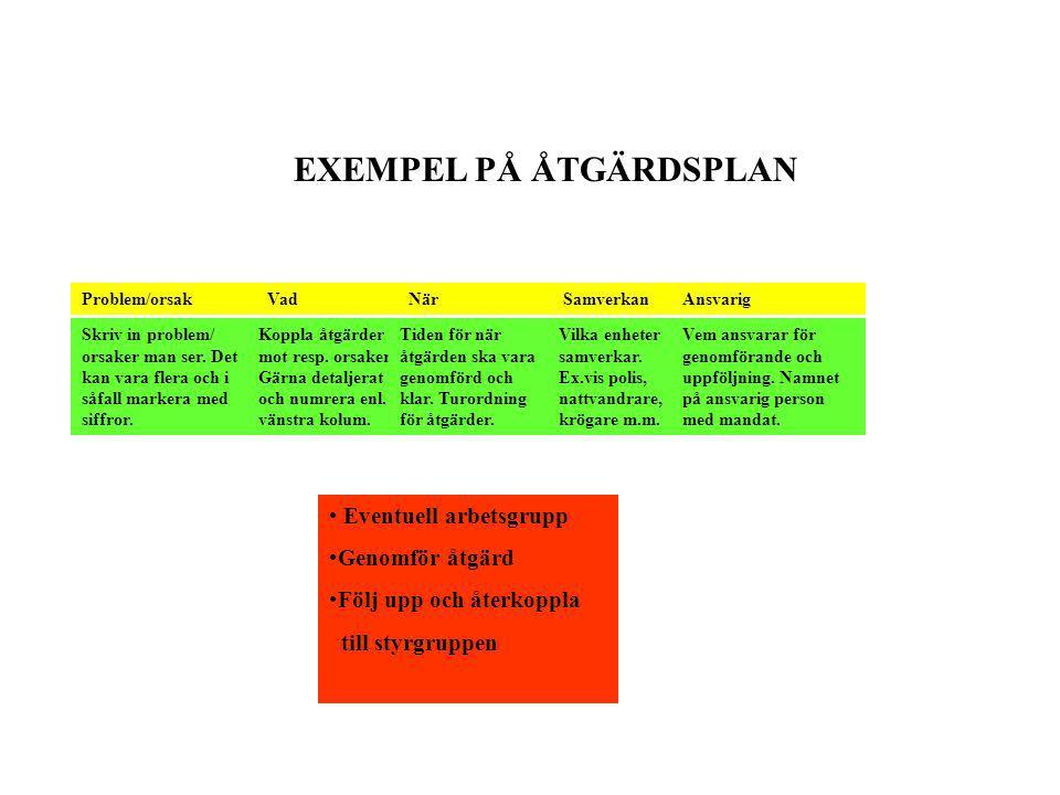 EXEMPEL PÅ ÅTGÄRDSPLAN Problem/orsakNärVad SamverkanAnsvarig Skriv in problem/ orsaker man ser.