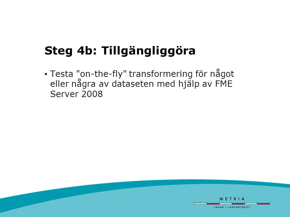 Steg 4b: Tillgängliggöra Testa on-the-fly transformering för något eller några av dataseten med hjälp av FME Server 2008