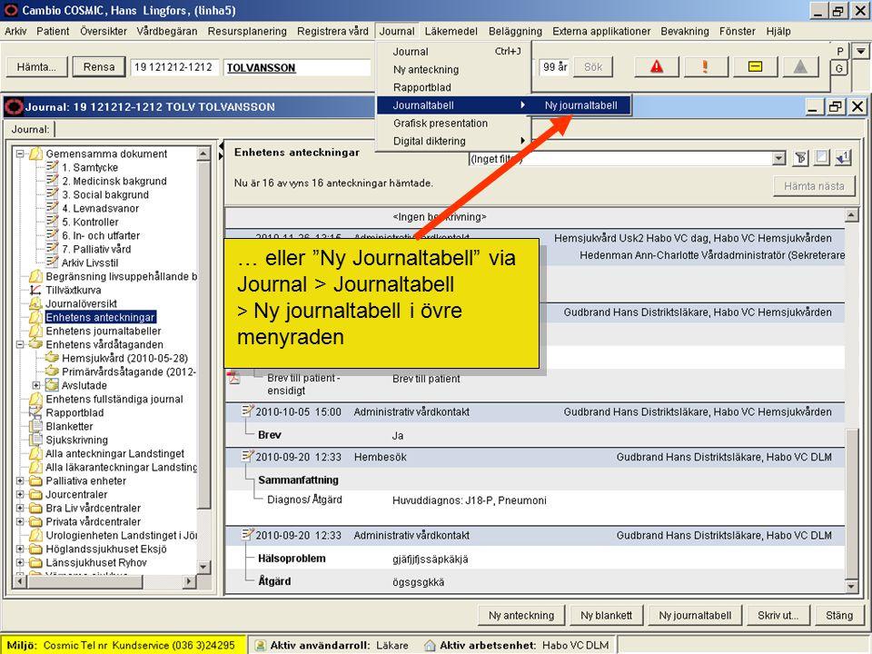… eller Ny Journaltabell via Journal > Journaltabell > Ny journaltabell i övre menyraden