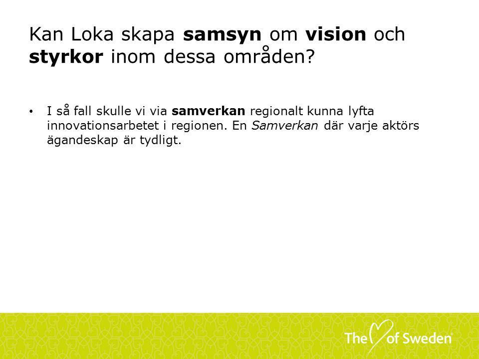 Kan Loka skapa samsyn om vision och styrkor inom dessa områden.
