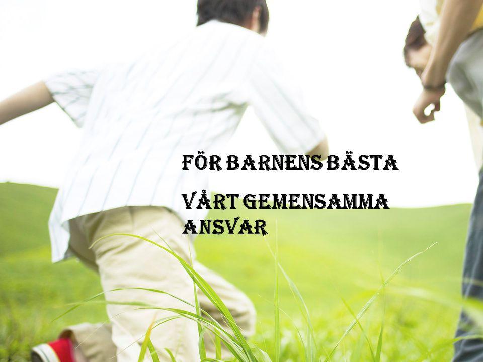 27.3.2015Birgitta Höglund För barnens bästa Vårt gemensamma ansvar För barnens bästa Vårt gemensamma ansvar