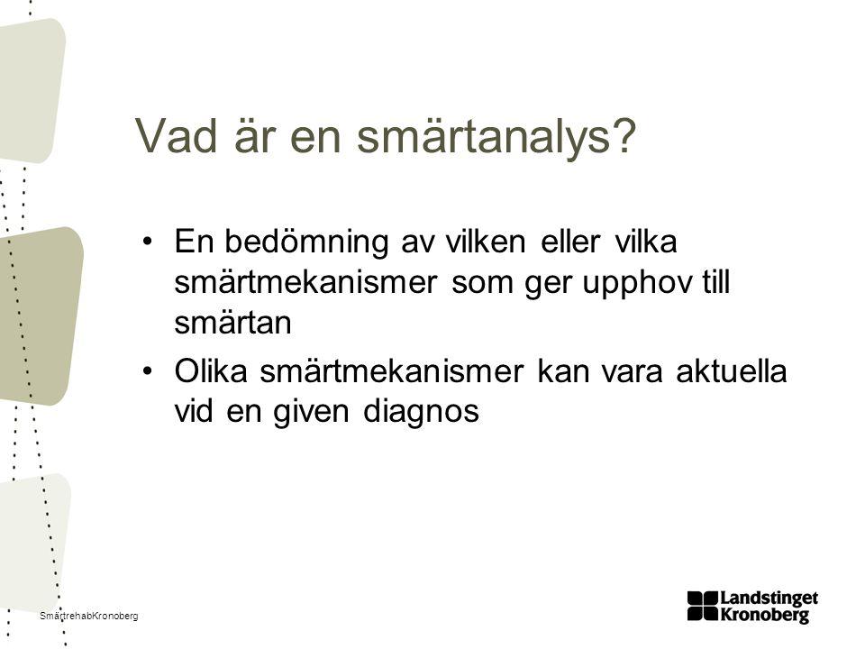 SmärtrehabKronoberg Vad är en smärtanalys.