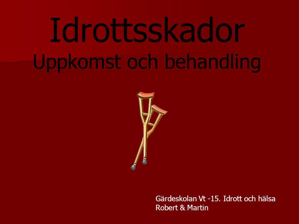 Idrottsskador Uppkomst och behandling Gärdeskolan Vt -15. Idrott och hälsa Robert & Martin