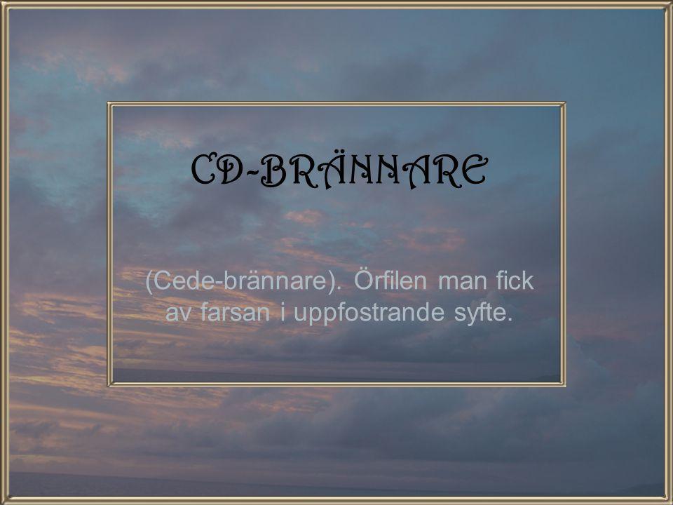 CD-BRÄNNARE (Cede-brännare). Örfilen man fick av farsan i uppfostrande syfte.