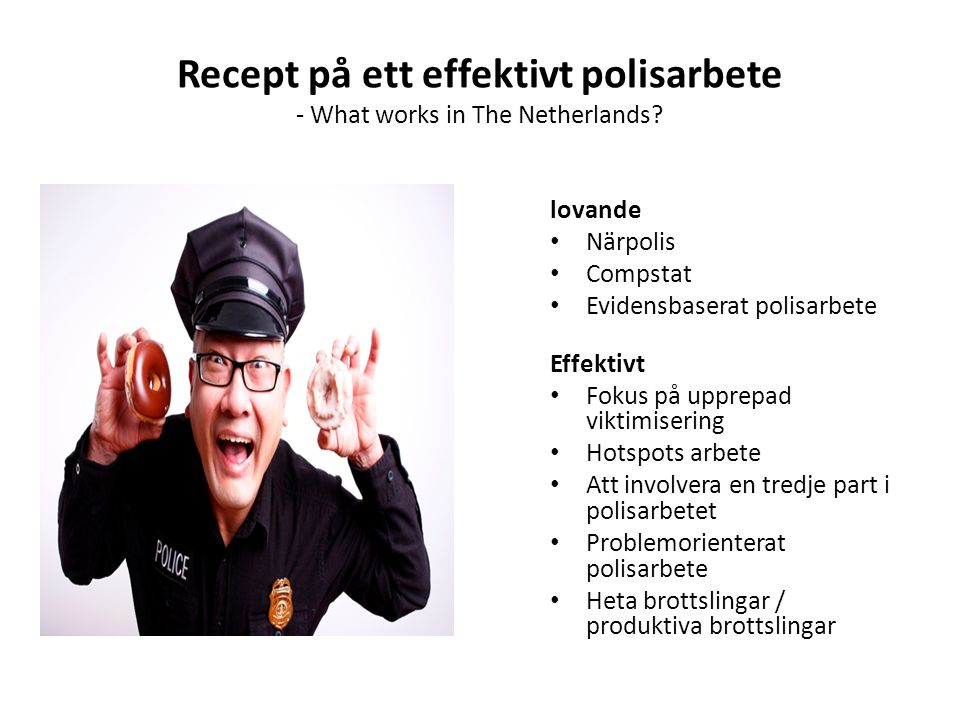 Recept på ett effektivt polisarbete - What works in The Netherlands.
