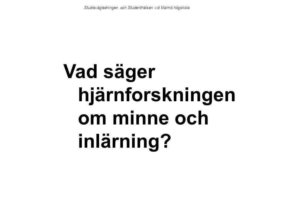 Vad säger hjärnforskningen om minne och inlärning? Studievägledningen och Studenthälsan vid Malmö högskola