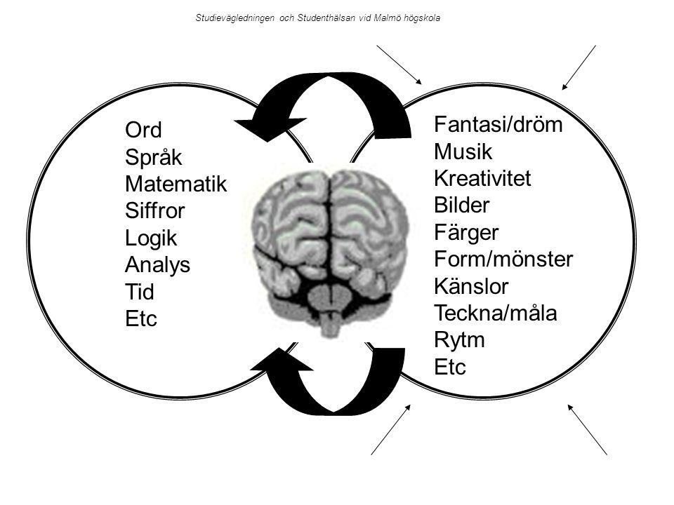 Ord Språk Matematik Siffror Logik Analys Tid Etc Fantasi/dröm Musik Kreativitet Bilder Färger Form/mönster Känslor Teckna/måla Rytm Etc Studievägledni