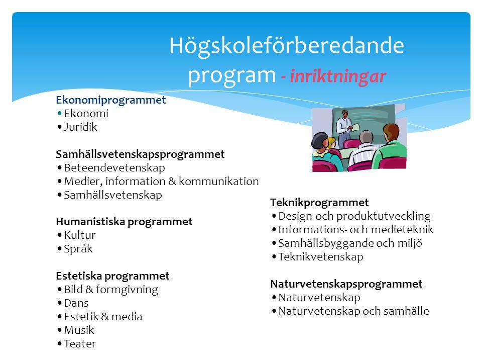 Lärlingsprogram  Alternativ väg till yrkesexamen  Inriktning fordon, hantverk, el eller bygg  Minst hälften av skoltiden ska bedrivas på en arbetsp