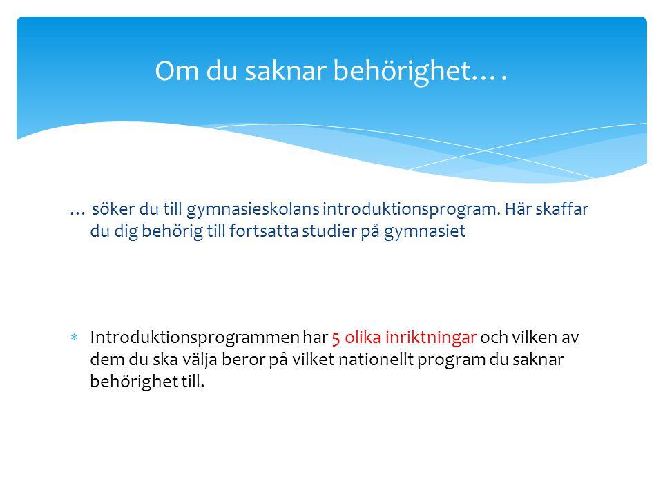  IB South (Skanstull) www.ibschoolsouth.se  Internationella Engelska skolan (Skanstull) www.engelskagymnasiet.se www.engelskagymnasiet.se  Åva gymn