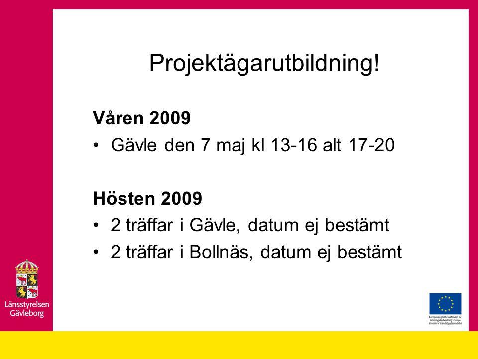 Projektägarutbildning.