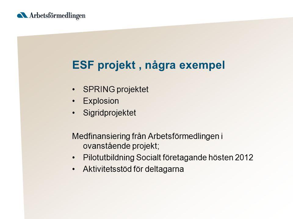 ESF projekt, några exempel SPRING projektet Explosion Sigridprojektet Medfinansiering från Arbetsförmedlingen i ovanstående projekt; Pilotutbildning S