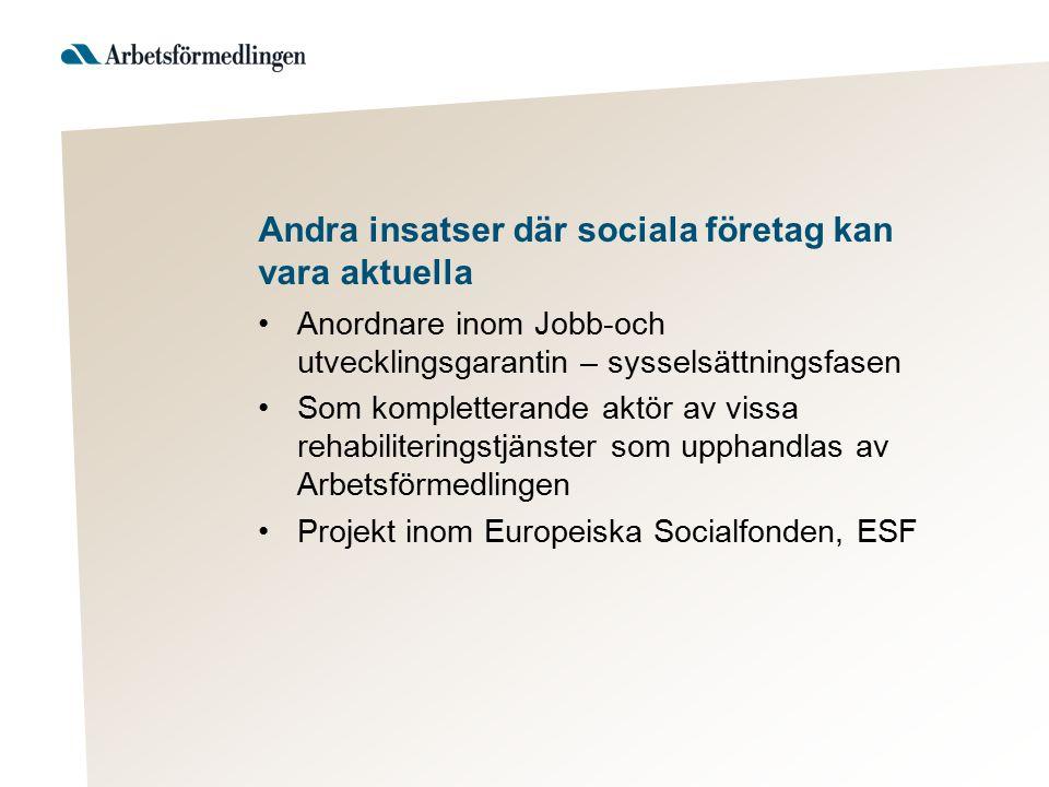 Andra insatser där sociala företag kan vara aktuella Anordnare inom Jobb-och utvecklingsgarantin – sysselsättningsfasen Som kompletterande aktör av vi