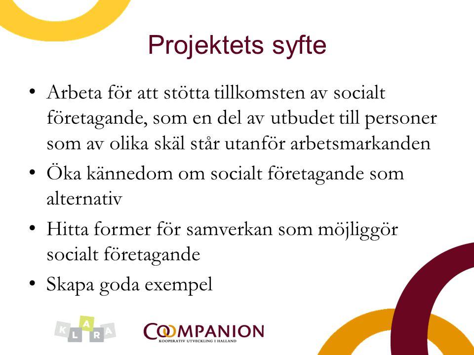 Projektets syfte Arbeta för att stötta tillkomsten av socialt företagande, som en del av utbudet till personer som av olika skäl står utanför arbetsma