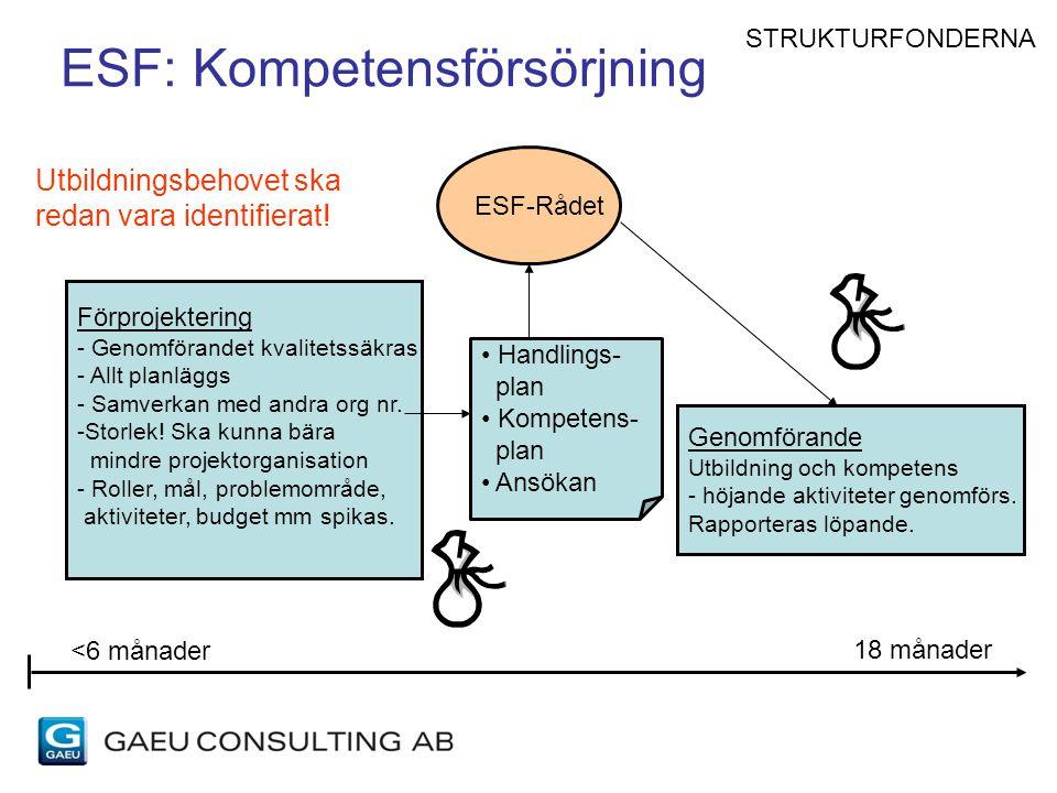 ESF: Kompetensförsörjning Genomförande Utbildning och kompetens - höjande aktiviteter genomförs. Rapporteras löpande. Förprojektering - Genomförandet