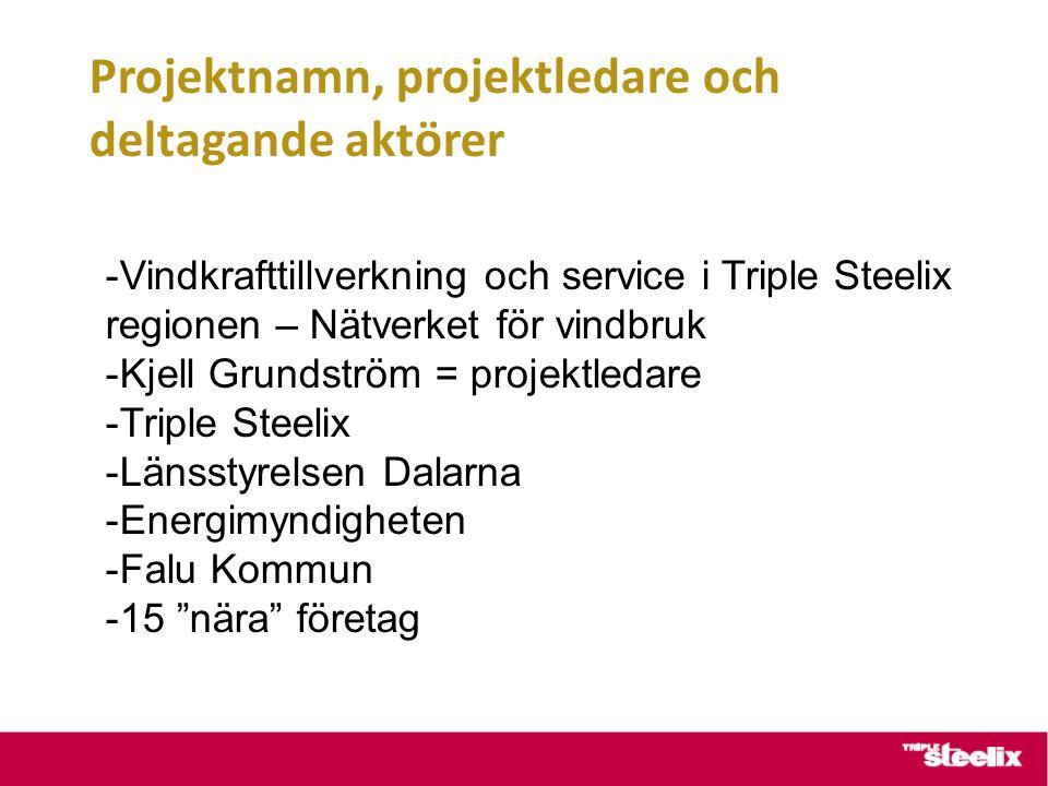 Projektnamn, projektledare och deltagande aktörer -Vindkrafttillverkning och service i Triple Steelix regionen – Nätverket för vindbruk -Kjell Grundström = projektledare -Triple Steelix -Länsstyrelsen Dalarna -Energimyndigheten -Falu Kommun -15 nära företag
