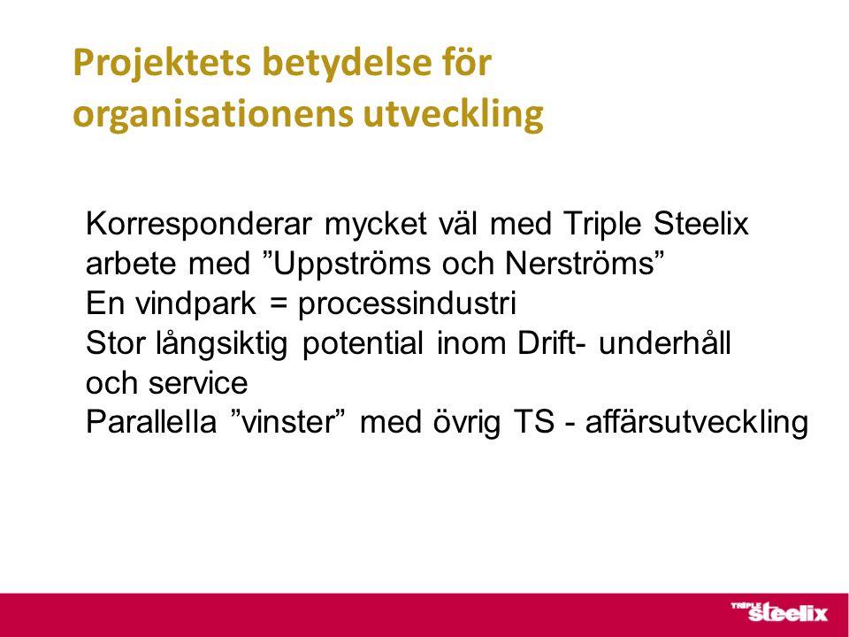 Projektets betydelse för organisationens utveckling Korresponderar mycket väl med Triple Steelix arbete med Uppströms och Nerströms En vindpark = processindustri Stor långsiktig potential inom Drift- underhåll och service Parallella vinster med övrig TS - affärsutveckling