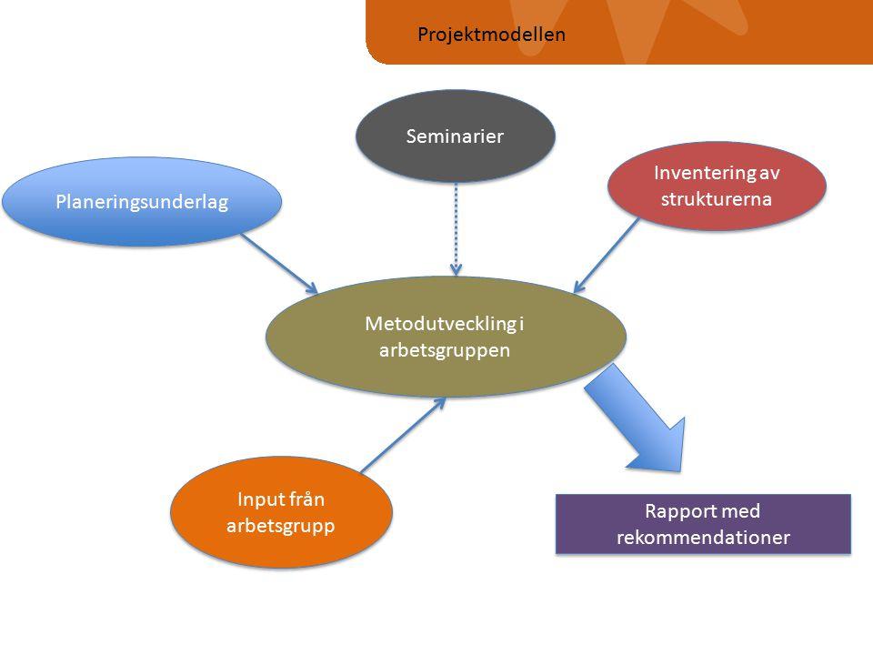 Metodutveckling i arbetsgruppen Planeringsunderlag Inventering av strukturerna Input från arbetsgrupp Rapport med rekommendationer Projektmodellen Seminarier