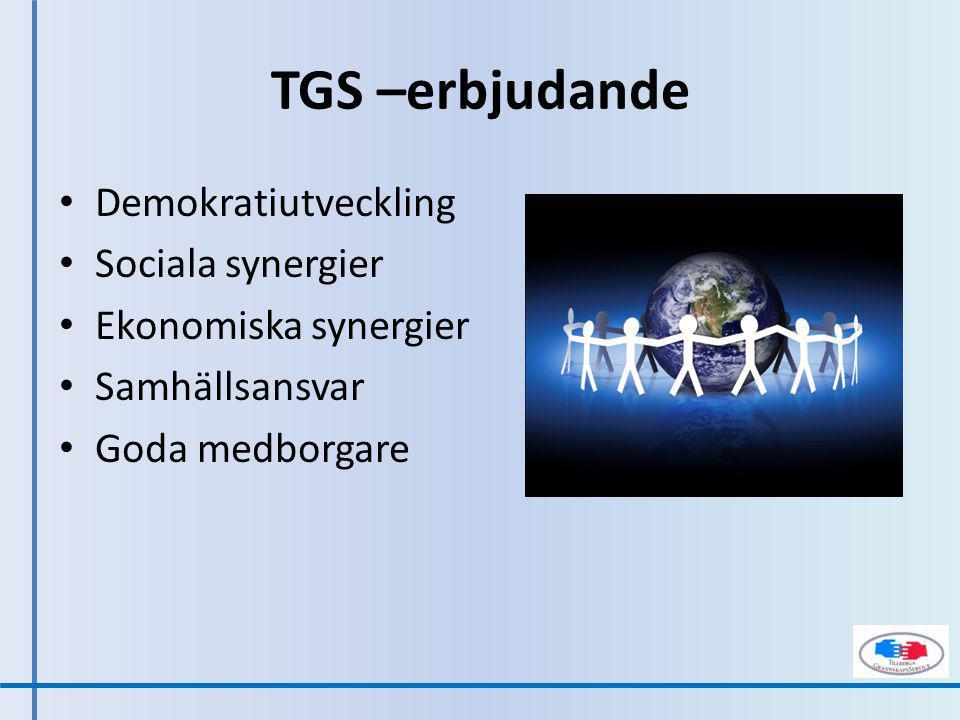 Demokratiprocessen Ekonomisk förening Grannskapskontoret Stämman Lokal styrelse Brukarråd Projekt