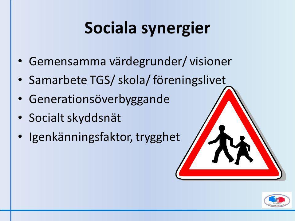 Sociala synergier Gemensamma värdegrunder/ visioner Samarbete TGS/ skola/ föreningslivet Generationsöverbyggande Socialt skyddsnät Igenkänningsfaktor, trygghet
