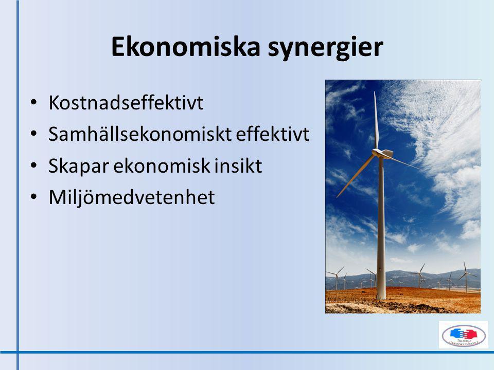 Kostnadseffektivt Samhällsekonomiskt effektivt Skapar ekonomisk insikt Miljömedvetenhet Ekonomiska synergier