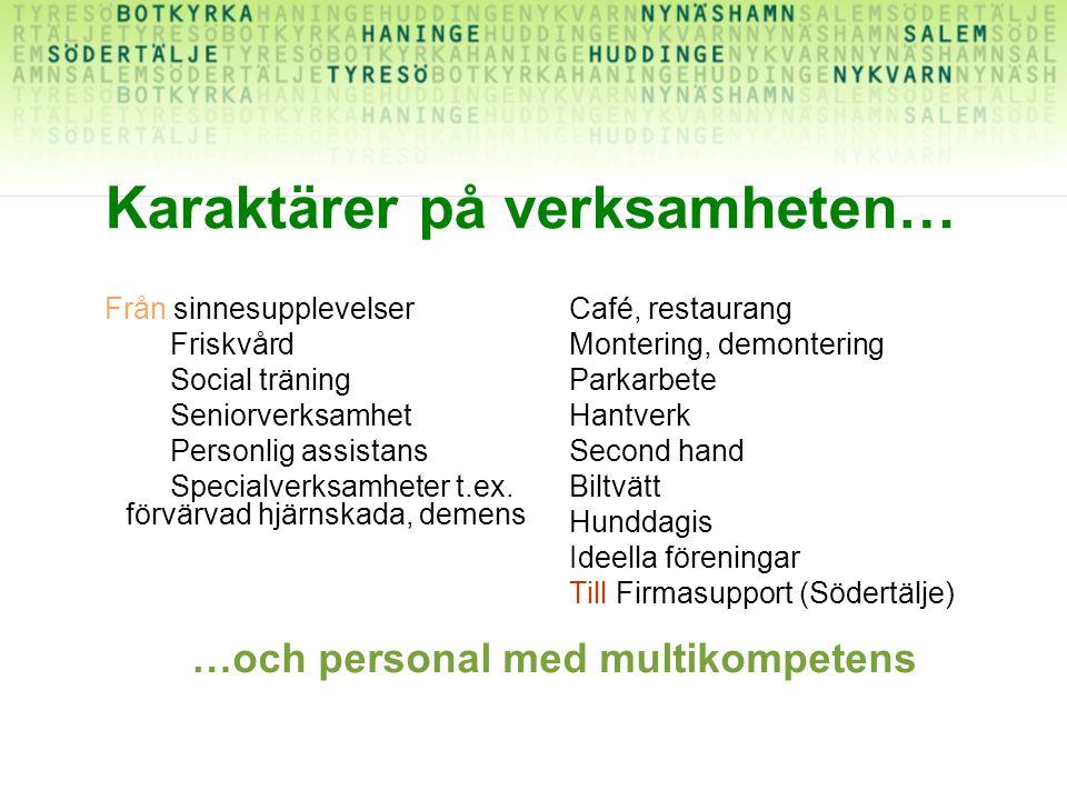Karaktärer på verksamheten… Från sinnesupplevelser Friskvård Social träning Seniorverksamhet Personlig assistans Specialverksamheter t.ex.
