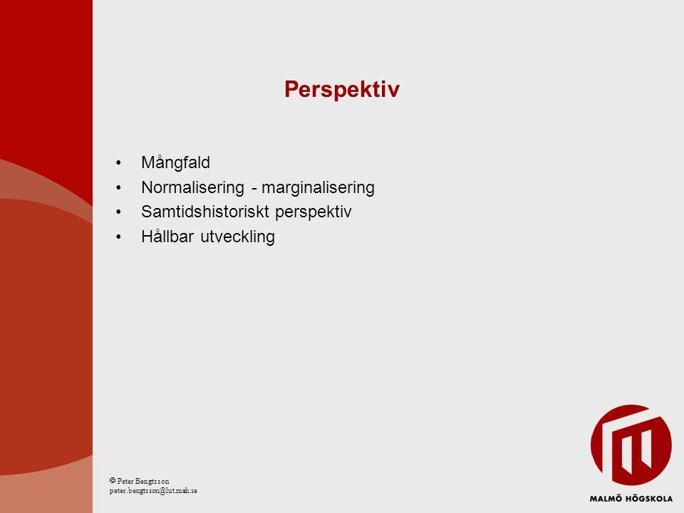 Perspektiv Mångfald Normalisering - marginalisering Samtidshistoriskt perspektiv Hållbar utveckling  Peter Bengtsson peter.bengtsson@lut.mah.se