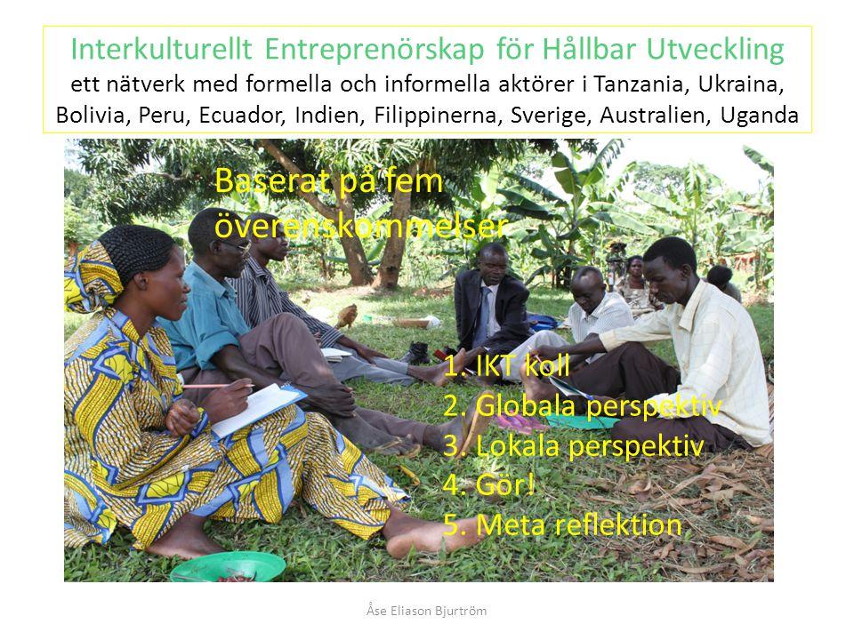 Interkulturellt Entreprenörskap för Hållbar Utveckling ett nätverk med formella och informella aktörer i Tanzania, Ukraina, Bolivia, Peru, Ecuador, Indien, Filippinerna, Sverige, Australien, Uganda Åse Eliason Bjurtröm 1.