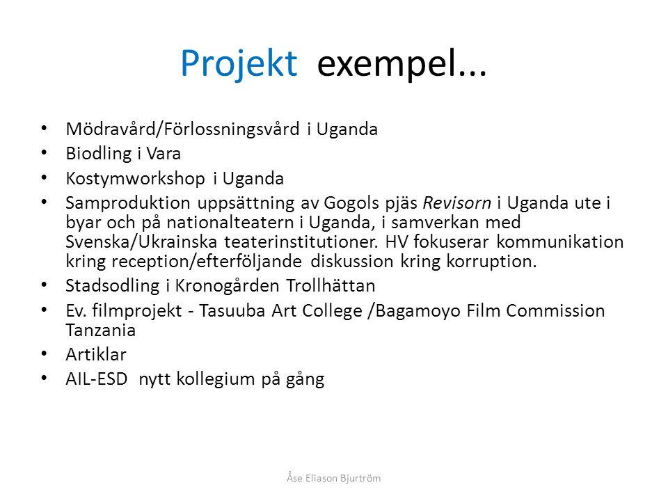 Projekt exempel...