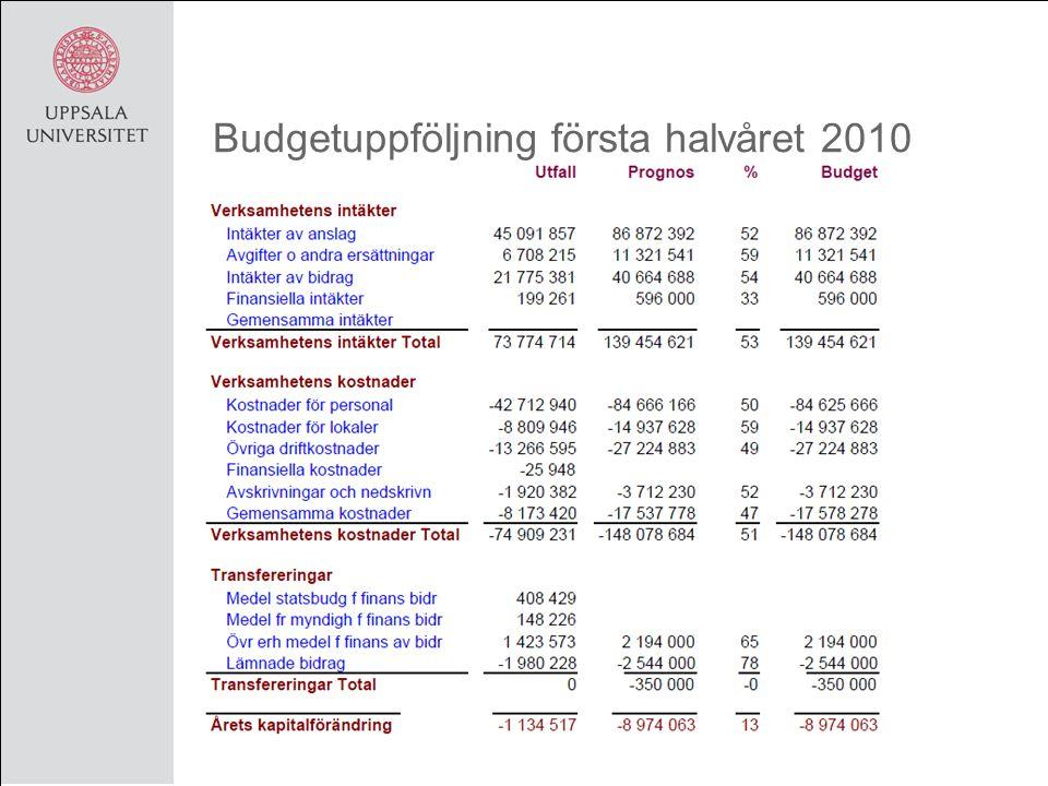 Budgetuppföljning första halvåret 2010