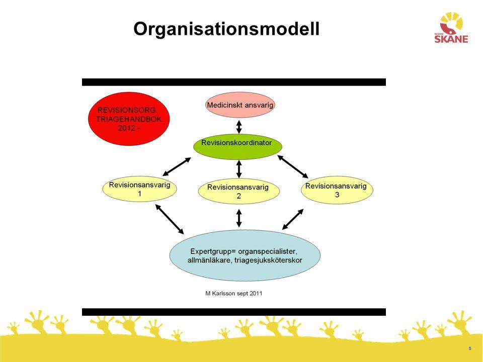 5 Organisationsmodell