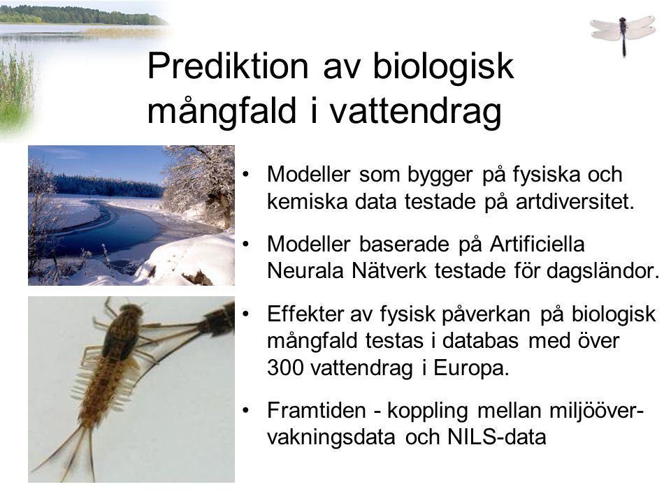 Modeller som bygger på fysiska och kemiska data testade på artdiversitet.