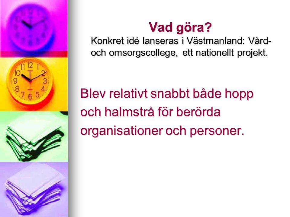 Vad göra? Konkret idé lanseras i Västmanland: Vård- och omsorgscollege, ett nationellt projekt. Blev relativt snabbt både hopp och halmstrå för berörd