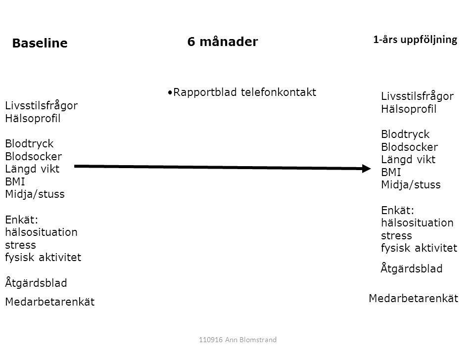 Livsstilsfrågor Hälsoprofil Blodtryck Blodsocker Längd vikt BMI Midja/stuss Enkät: hälsosituation stress fysisk aktivitet Åtgärdsblad Baseline 6 månad