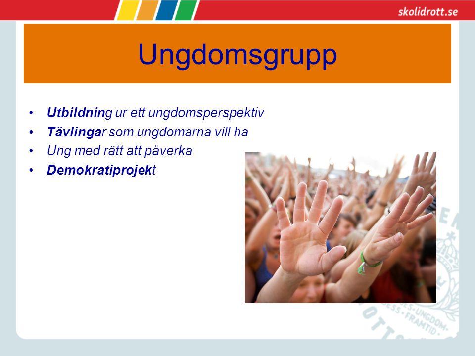 Ungdomsgrupp Utbildning ur ett ungdomsperspektiv Tävlingar som ungdomarna vill ha Ung med rätt att påverka Demokratiprojekt