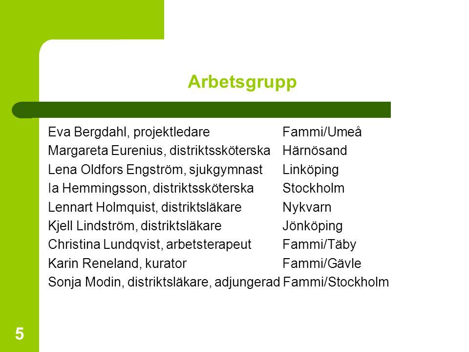 5 Arbetsgrupp Eva Bergdahl, projektledare Fammi/Umeå Margareta Eurenius, distriktssköterskaHärnösand Lena Oldfors Engström, sjukgymnastLinköping Ia He
