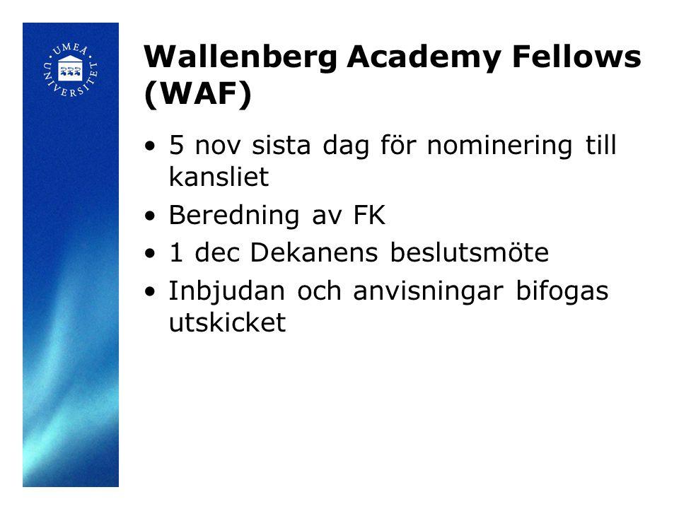 Wallenberg Academy Fellows (WAF) 5 nov sista dag för nominering till kansliet Beredning av FK 1 dec Dekanens beslutsmöte Inbjudan och anvisningar bifogas utskicket