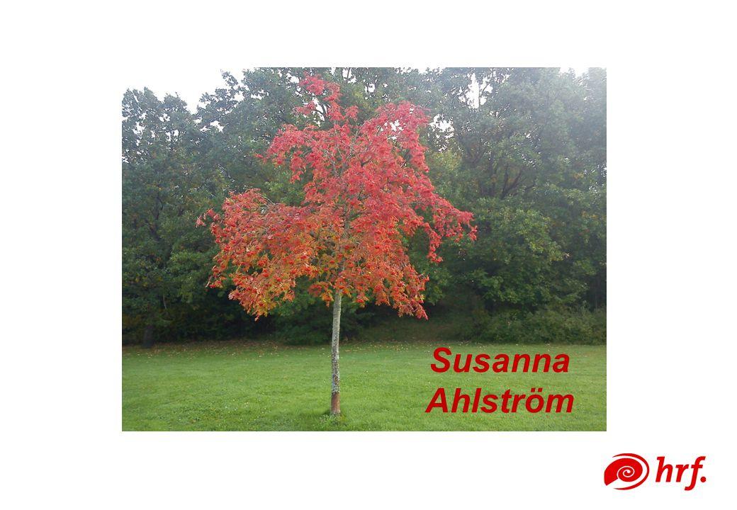 Susanna Ahlström