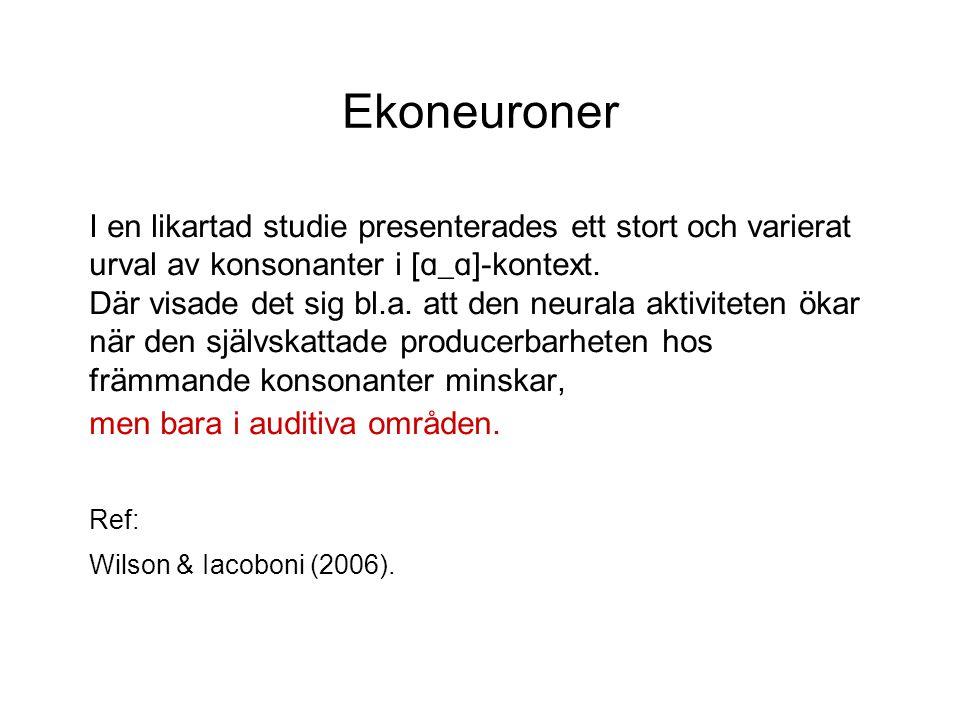Ekoneuroner I en likartad studie presenterades ett stort och varierat urval av konsonanter i [ ɑ_ɑ ]-kontext.