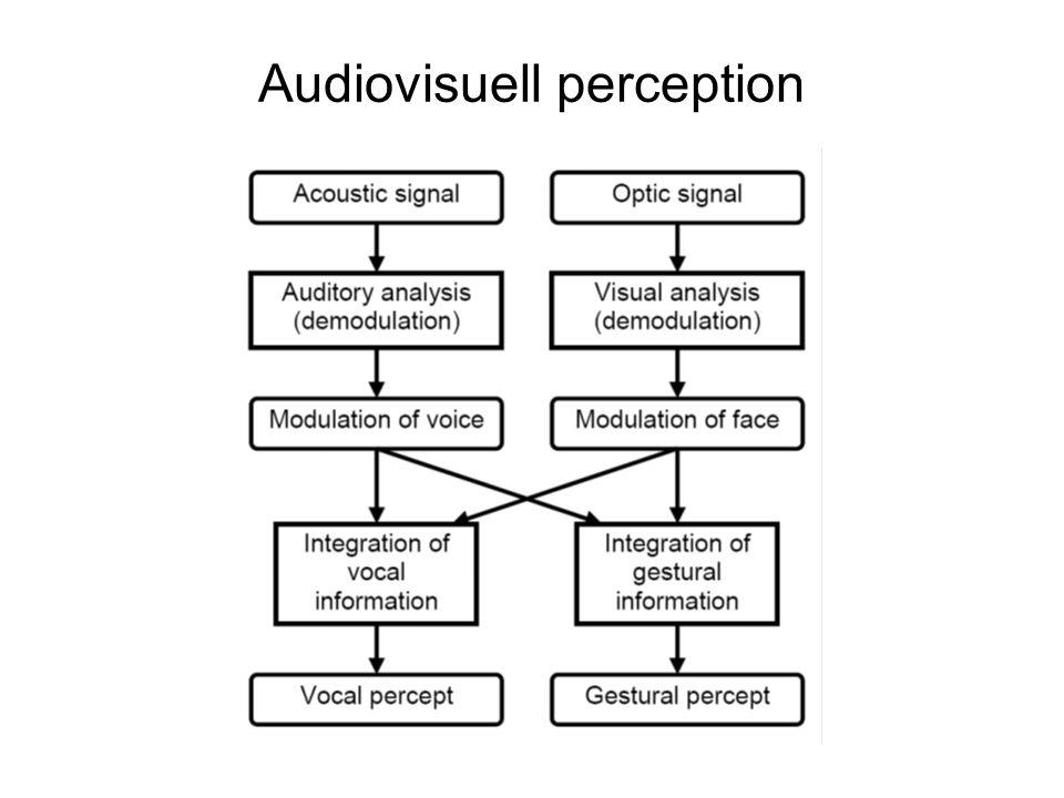 Audiovisuell perception