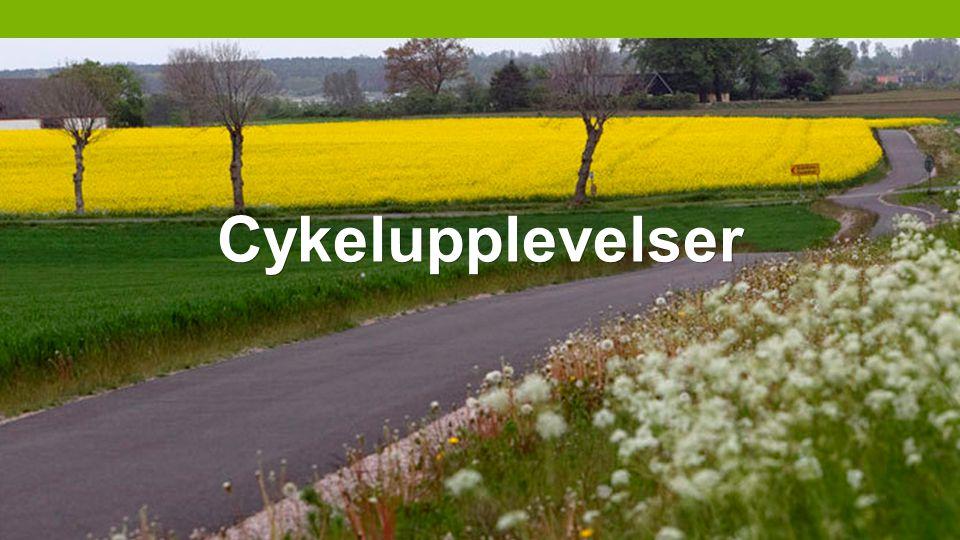 Cykelupplevelser