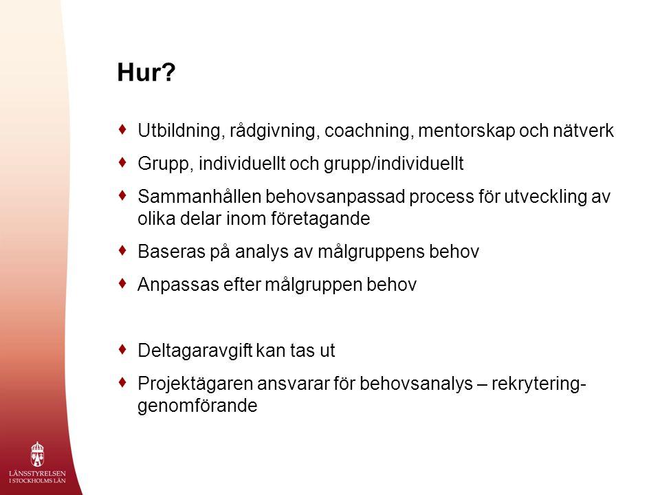 Hur?  Utbildning, rådgivning, coachning, mentorskap och nätverk  Grupp, individuellt och grupp/individuellt  Sammanhållen behovsanpassad process fö