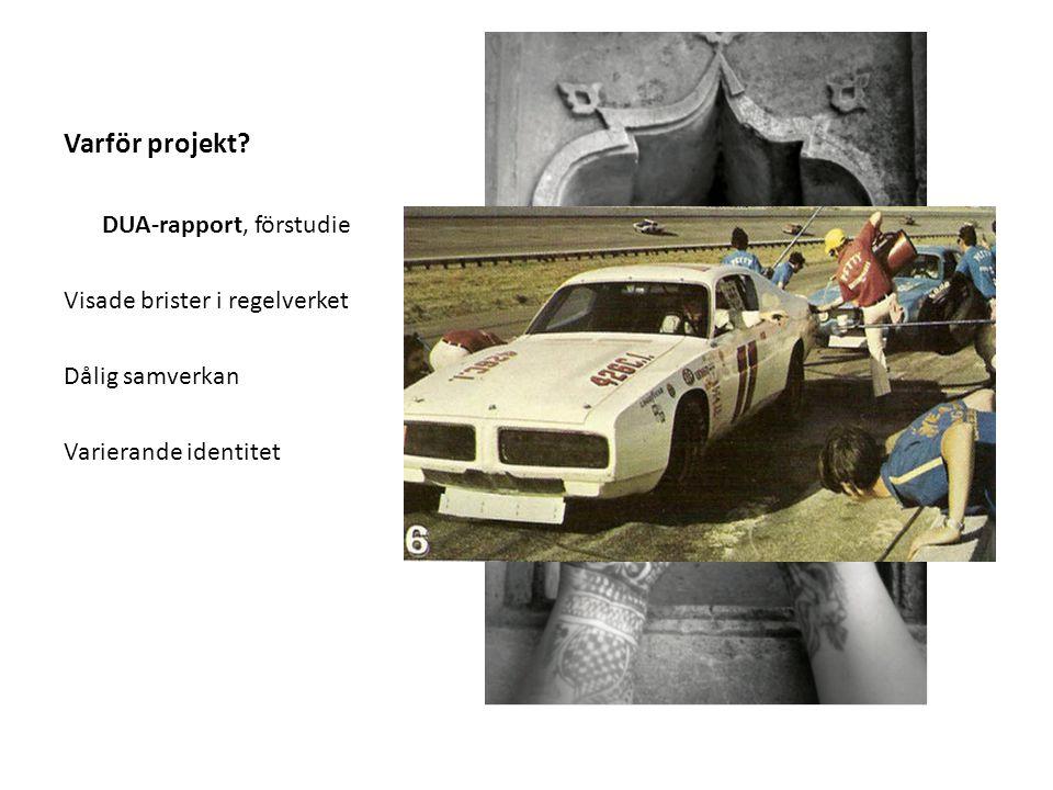 Projektets syfte Finna modeller och metoder, etablera sig på arbetsmarknaden genom att: - Stärka målgruppen - Strukturera samverkan