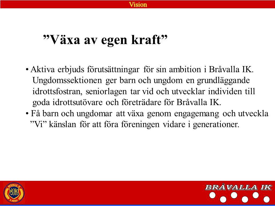 Policy Etik och Moral, Bråvalla IK På planen tolereras inga gula och röda kort för snack och protester, nollvision eftersträvas.