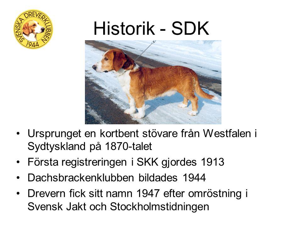 Svenska Dreverklubben Presentation 2013